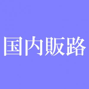 icon国内販路