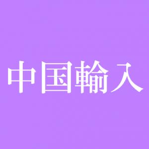 icon中国輸入