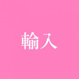 icon輸入